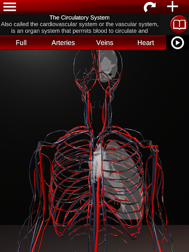 Circulatory System in 3D (Anatomy) 1.58 screenshots 17