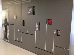 Photo: L'herbier et les jeux de panneaux coulissants entre dessins et images de fleurs