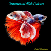 Ornamental Fish Culture