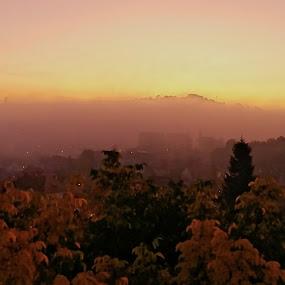 by Gino Libardi - Landscapes Sunsets & Sunrises ( sunsets, sunset, sunlight, landscapes, landscape,  )