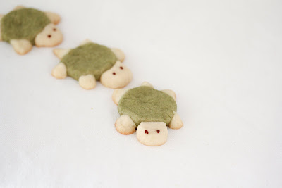 photo of three Sugar Cookie Turtles