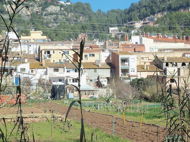 Vistes dels horts i la part del darrera de les cases del carrer Sant Isidre amb les penyes de Fontpineda (Pallej&agrave;) de fons. <b>Autor: Konfrare Albert</b>