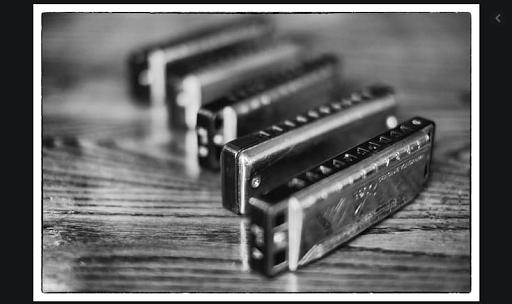 Learn harmonica. Harmonica 24 double cells  screenshots 3
