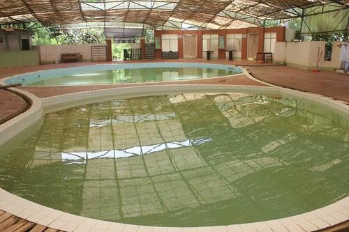 Một vòng du ngoạn Suối nước nóng Kênh Gà 5