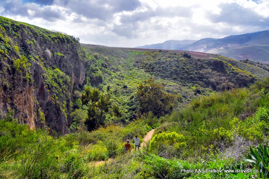 Весенний пейзаж. Север Израиля. Верхняя Галилея.