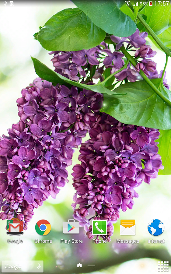 Lilac live wallpaper android apps on google play for Lilac butterfly wallpaper