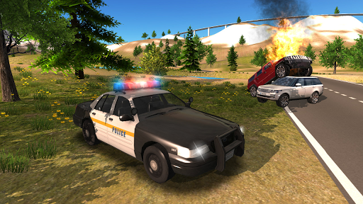 Police Car Driving Offroad 2 screenshots 15