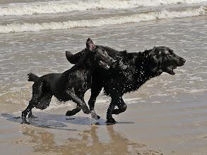 Photo: Spiele am und im Wasser.....