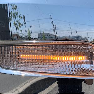 スーパーグレートのカスタム事例画像 佐奈Sevenさんの2020年06月02日13:40の投稿