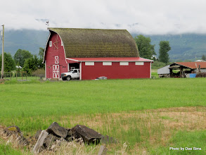 Photo: (Year 2) Day 345 - Farm Building on Puget Island #2