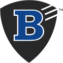 Boonwire icon