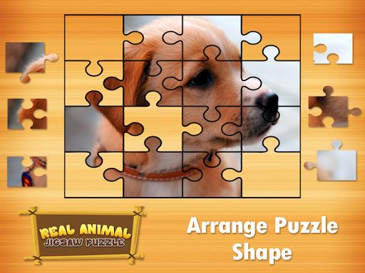Animal Jigsaw Puzzles DayCare 1.0 screenshots 3