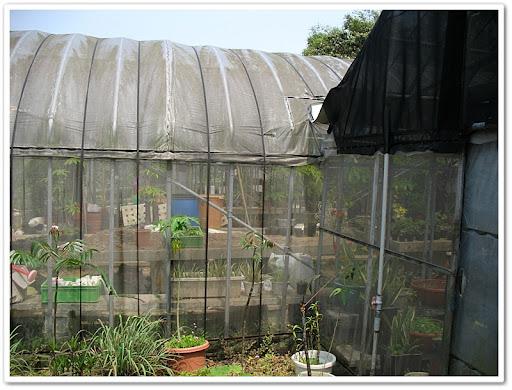 溫室栽培區
