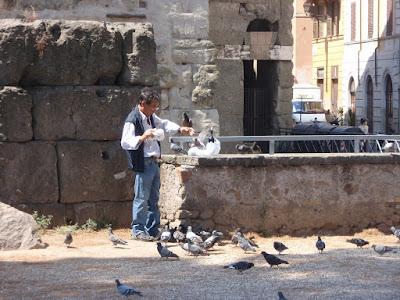 Otra de palomas