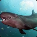 False Killer Whale LWP icon