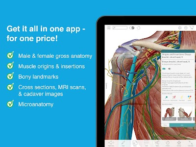 Human Anatomy Atlas 2017 v2017.1.39 Unlocked