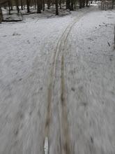 Photo: Крайние метры Радонежской просеки