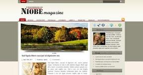 Free Wordpress Theme - Niobe