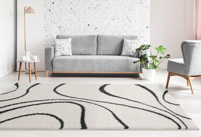 Rugs in Offices