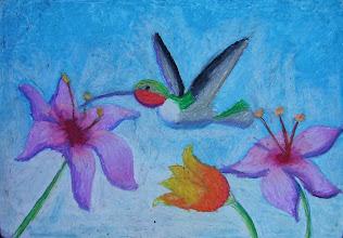 Photo: Гельфер Настя , 11 лет. Студия Т. Белоконенко «Птицы Израиля. Колибри». Хайфа, Израиль