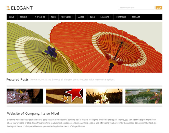 Elegant and Clean WordPress Theme