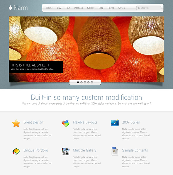 Narm Professional WordPress Theme