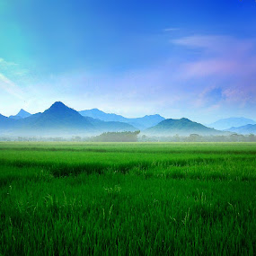 Bukit Somoroto by Axl Digital's - Landscapes Mountains & Hills