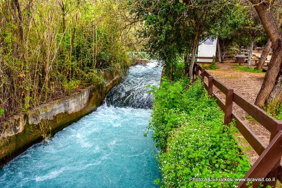 Река Дан в заповеднике Тель Дан. Экскурсия по Голанским высотам.