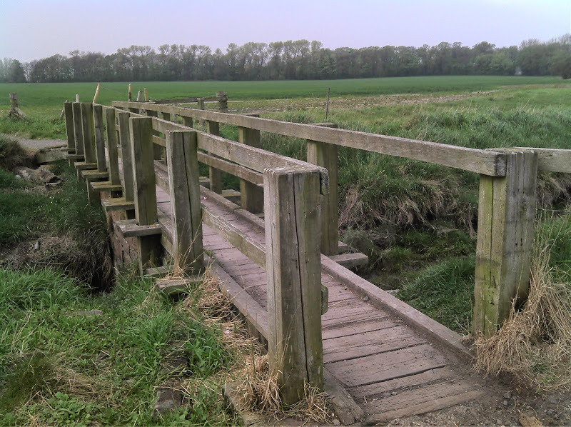 Photo: bridge oglet shore
