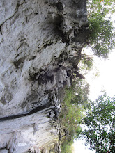 Photo: Looking up at the overhanging island
