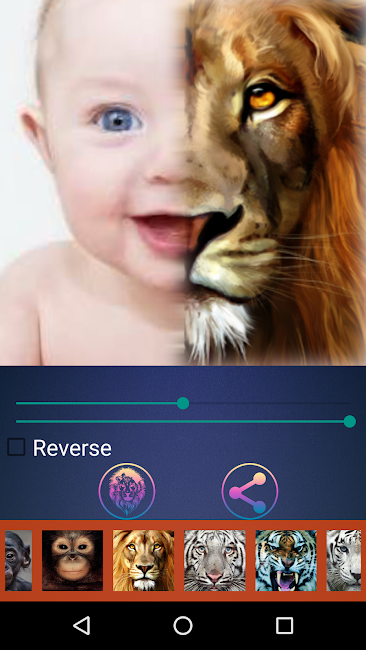 #5. Animal Photo Face Mix (Android)