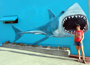 Photo: Doo-doo...doo-doo...dum-dum-dum-dum...Shark Attack!