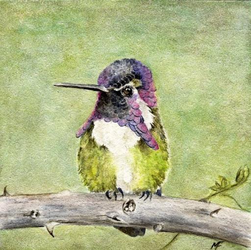 watercolour bluebird painting