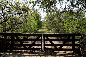 Photo: The Gate @ Wakodahatchee Wetlands Pathway, Wakodahatchee Wetlands, FL - http://photo.leptians.net