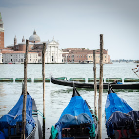 Gondolas on the Lagoon by Adam Lowe - Transportation Boats ( vacation, venice, places, activities, italy )