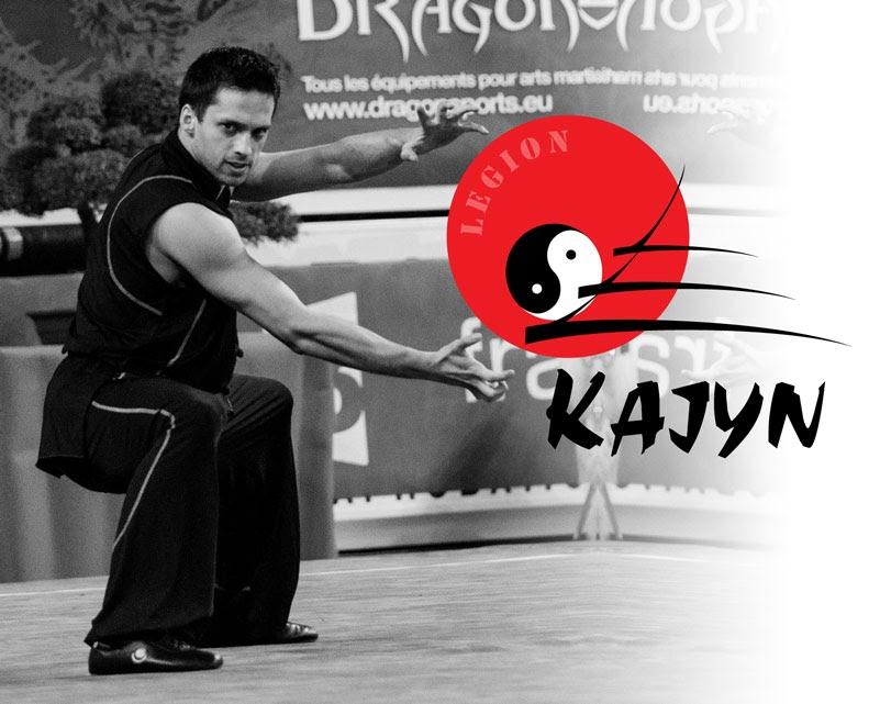 Wilfried Maquin prof de Kung Fu Hung Gar, Sanda et Wing Chun au Kajyn