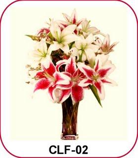 Bunga Lily Casablanca