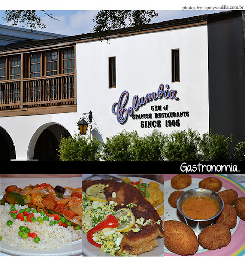 staugust7 - Visitando | St. Augustine -FL