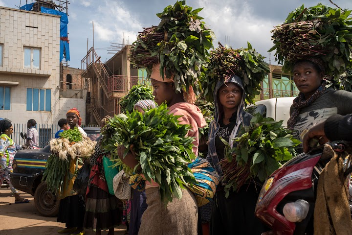 Women in the streets of Bukavu carrying plants