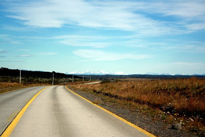 Road from Punta Arenas to Puerto Natales in Patagonia in Chile