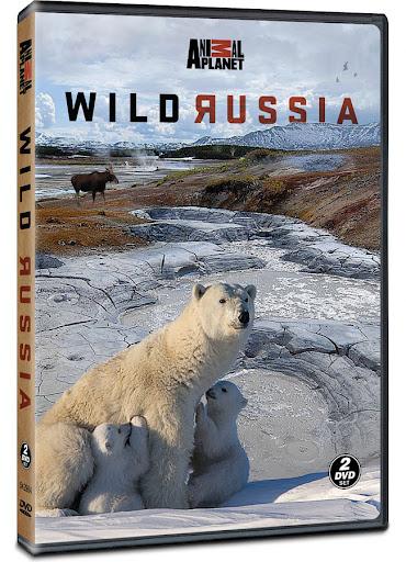 Россия от края до края / Дикая природа России / Wild Russia