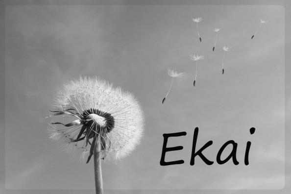 http://chrysallis.org.es/wp-content/uploads/2018/02/EKAI.jpg
