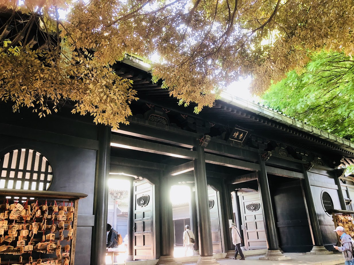 湯島聖堂 Yushimaseidou