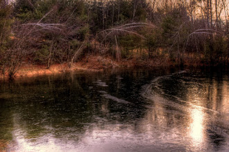 Photo: Ice forming Each day the ice advances just a bit. The curve of the advancing ice complements the bent birches.  #365Project curated by +Simon Kitcher