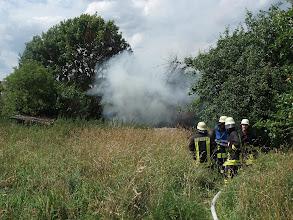 Photo: nach dem 18.06.2011 der zweite Brand in diesem Garten