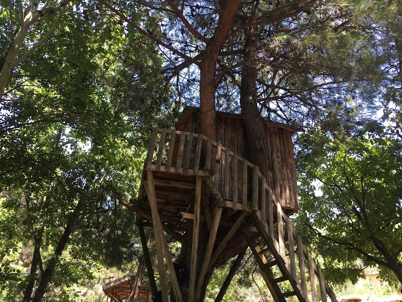 Ağaç ev Kazdağları