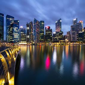 Urban Jungle by Richard Amar - City,  Street & Park  Skylines ( skyline, twilight, reflections )