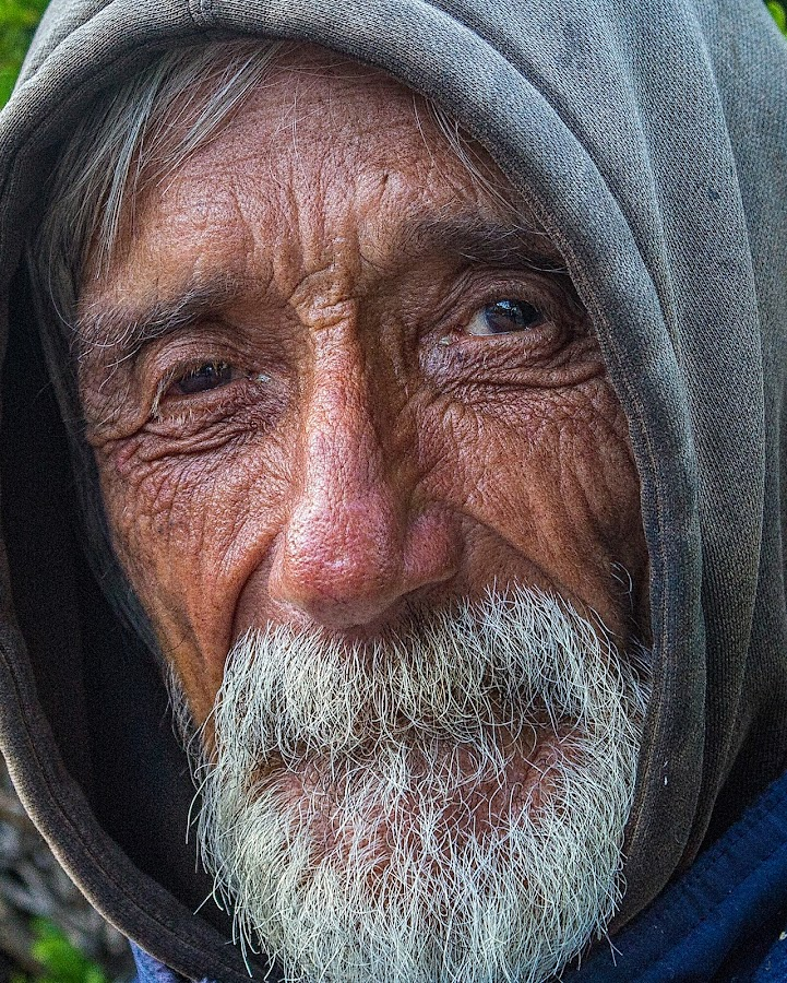 Homeless Man in Sausalito  by Lee Molof - People Street & Candids (  )