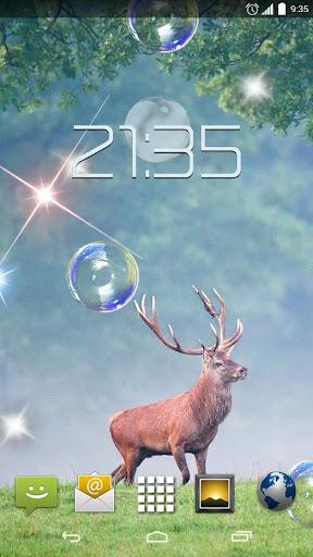 Forrest Deer 4K Live Wallpaper