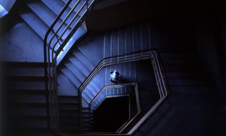 Scala di blu di Massimo Genovesi